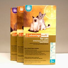 Advantage Multi for Cats is a monthly topical heartworm, flea, intestinal worm & ear mite preventative.  It also recently has been approved for use in ferrets as a heartworm and flea preventative.