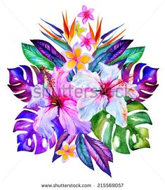 central tropical composition, hibiscus, plumeria, monstera, palm, bird of paradise, drawn in watercolor on white