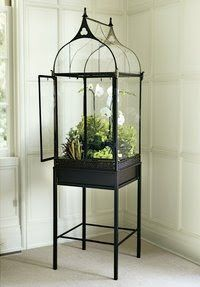 H Potter terrarium