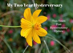 Two Year Post Total Hysterectomy Update | Living Linda