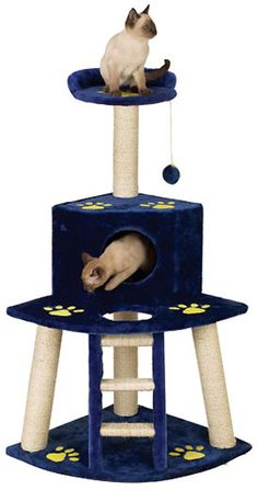 The Siamese gang's cat tower in. Cat Tree Condo, Cat Condo, Cat Climbing Tree, Cat Climber, Cat Gym, Cats 101, Cat Towers, Cat Stands, Pet Furniture