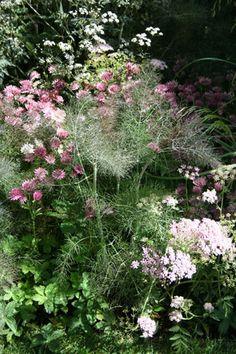 The Laurent Perrier Garden Nature and Human Intervention by garden designer Luciano Giubbilei Chelsea Flower Show 2011