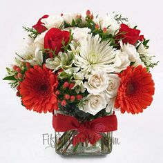 Gerbera daisies, Red Roses and berries, blended with White holiday flowers and green pine create this beautiful holiday flower arrangement.