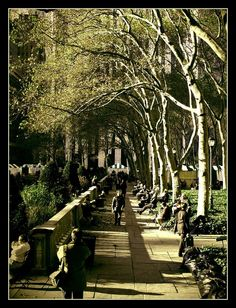 I have a small obsession with Bryant Park in New York