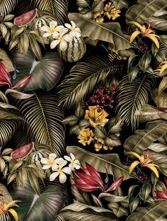 Jungle print for AMI s/s 2014 por Violaine & Jeremy em Behance