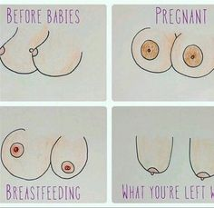 How boobs change comic. Before babies, pregnant, breastfeeding, after. Breastfeeding Classes, Pregnant And Breastfeeding, Breastfeeding Support, Breastfeeding Quotes, Pregnancy Memes, Post Pregnancy, Image Blog, Before Baby, Infancy