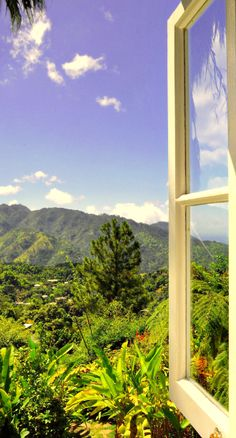 #Jetsetter Daily Moment of Zen: Strawberry Hill in #Jamaica.