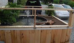 Amazing outdoor stock tank turtle habitat