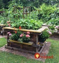 8 Excellent Pallet Garden Ideas For Your Backyard Vertical Pallet Garden, Herb Garden Pallet, Pallets Garden, Vertical Gardens, Raised Gardens, Garden Planters, Garden Beds, Diy Garden, Garden Club