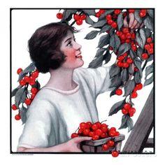 """Picking Pints of Cherries,""May 19, 1923 Katherine R. Wireman -"