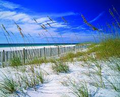 The beach of Amelia Island