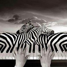Beautiful Music ⊰♡⊱