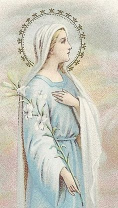 Our Lady, The Lily of The Valley
