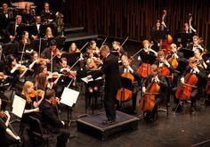 راهنمای انتخاب رشته نوازندگی موسیقی جهانی ظرفیت و دانشگاه های پذیرنده کنکور هنر