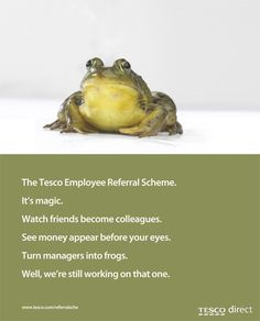 It's National Frog Day! Copywriting, Ads, Advertising, Google Search, Nice, Inspiration, Poster, Messages
