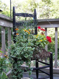 container garden ideas plantas-y-jardines-plants-gardens Container Flowers, Container Plants, Container Gardening, Garden Chairs, Garden Planters, Unique Gardens, Dream Garden, Garden Projects, Garden Inspiration