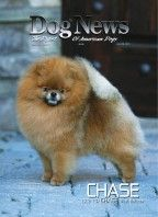 Magazine Dog News 20 April 2012