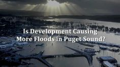 Floodplain management | Help protect floodplains for people and wildlife | by National Wildlife Foundation | 5 min