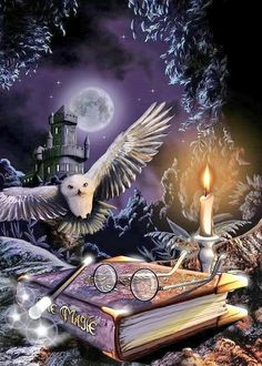 The wizard, the owl, and the castle -- Harry Potter, Hedwig, and Hogwart's