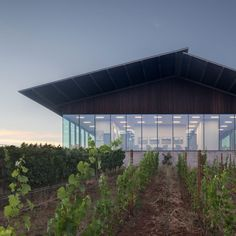 A 1970s vineyard in Oregon wine country has been revamped and extended, with its structures unified by a screen made of slim cedar batons. Industrial Architecture, Modern Architecture, Portland, Steel Sheds, Oregon, Mechanical Room, Wine Tasting Room, Villa, Rest House
