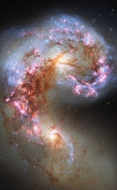 The Antennae Galaxies - NGC 4038 and 4039 The Antennae Galaxies are a pair of colliding galaxies that began to merge a few hundred million years ago in the constellation Corvus. They are currently going through a starburst phase, in which the collision of clouds of gas and dust, with entangled magnetic fields, causes rapid star formation. The two galaxies are dotted with brilliant blue star-forming regions...