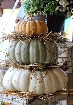 Fall pumpkins - light aqua blue, white, and orange / decorating for Autumn