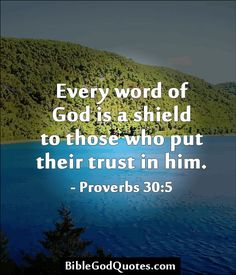 Every word of God is a shield to those who put their trust in him. – Proverbs 30:5