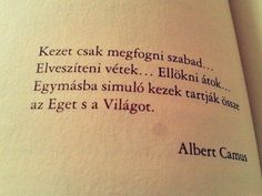 Some Good Quotes, Quotes To Live By, Best Quotes, Love Quotes, Funny Quotes, Motto Quotes, Motivational Quotes, Tumblr Quotes, Albert Camus