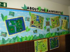 Rainforest coordinates and information Rainforests, Classroom Displays, Geography, School Stuff, Projects To Try, Teaching, Education, My Love, Gardens