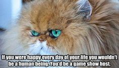 "Community Post: 25 ""Heathers"" Quotes Retold By Cats"