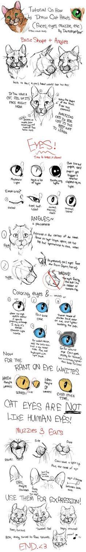 How to Draw Cat Heads by ~Darkstripe4ever on deviantART by barkingdog03