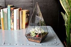 Obelisk Terrarium | Make a small monument of your house plants by putting them inside this clear glass obelisk.
