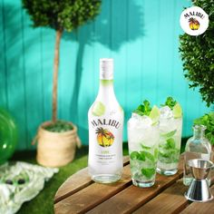 weddings - Nothing says Summer is here quite like a MalibuRum Lime Mojito especially when it's an easy mojito recipe that you can make for your next beach party! Shortcut your prep time with the new Malibu Lime that adds a twist to this refreshing cocktai Refreshing Cocktails, Cocktail Drinks, Yummy Drinks, Malibu Cocktails, Lime Drinks, Fancy Drinks, Mixed Drinks Alcohol, Alcohol Drink Recipes, Fireball Recipes