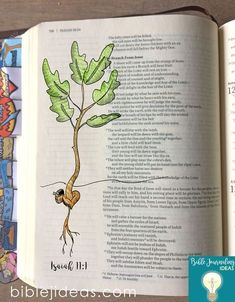 Bible Journaling Ideas - Oak plant Two free traceables Art Journaling, Bible Journaling For Beginners, Bible Study Journal, Prayer Journals, Joshua Bible, Isaiah Bible, Isaiah 11, Bible Drawing, Bible Doodling