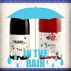 5Rosas 2015 rosado  y Pájaro Rojo #losadavinos #Bierzo #mencia dos propuestas alegres para un día de lluvia. #instagramers #igersbierzo #igersleon #love #dobierzo #ponferrada #bottlesofwine #WineandDine #igersbierzo #RainyDay