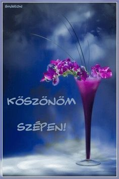 Köszönöm szépen Sharon Good Morning Messages, Good Morning Good Night, New Month, Poetry Quotes, Beautiful Day, Hug, Wish, In This Moment, Happy