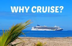 Every wondered Why Cruise holidays are the best, contact Bucket List Africa to find out why and to book your cruise. 2018 / 2019 cruise season is open for bookings. Game Lodge, Cruise Holidays, Lodges, Parks, Safari, How To Find Out, Wildlife, Bucket, African