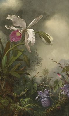 Martin Johnson Heade (1819-1904) - Orchid, passionflowers and hummingbird in jungle, oil on canvas, 50,8 x 30,5 cm.