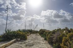 munxar path #photography #Landscape #Malta Path #Plants #Traveling