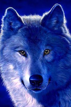 The Blazing Blue Wolf Patrol