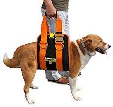 Resultado de imagen de Therapy Suit harness