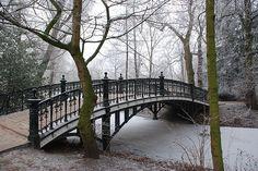 Vondelpark Winter Bridge Amsterdam