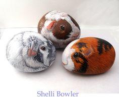 Painted Rocks by Shelli Bowler Guinea Pigs by PaintedRocksbyShelli