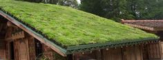 What You Didn't Know About Green Roofs