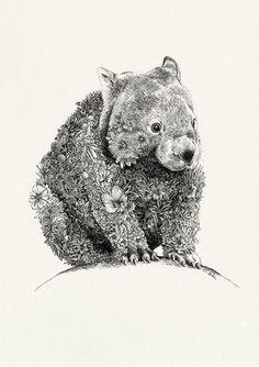 Wombat - Giclée Print – Marini Ferlazzo - Art for Wildlife Australian Animals, Australian Art, Wombat, Animal Sketches, Animal Drawings, Australian Tattoo, Echidna, Guache, Glitch Art