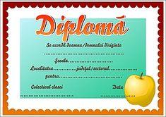 Diplomă pentru diriginți II