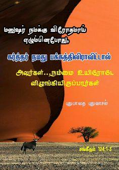 Bible Words Images, Tamil Bible Words, Open Bible, Jesus Wallpaper, Bible Promises, Verses, Lion, Leo, Poems