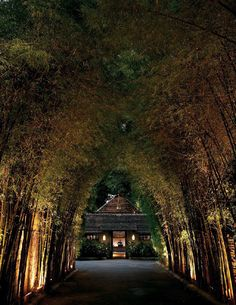 STAY: Top 5 Hotels To Rest and Relax In Chiang Mai