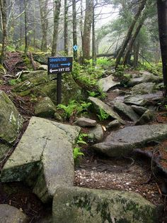Friendship Bucketlist Item: DONE 5/2/15 Grandfather's Profile Hike in Grandfather Mountain State Park, NC