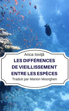 Buy La Brecha del Envejecimiento Entre las Especies by Anca Ioviţă and Read this Book on Kobo's Free Apps. Discover Kobo's Vast Collection of Ebooks and Audiobooks Today - Over 4 Million Titles! Science, Memoirs, Nonfiction, Books To Read, Audiobooks, Have Fun, Ebooks, This Book, Advertising